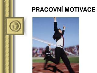 PRACOVN� MOTIVACE