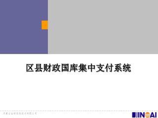 区县财政国库集中支付系统