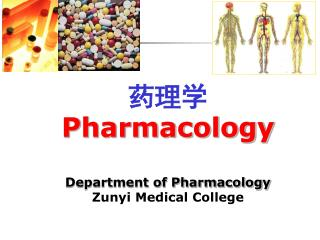 药理学 Pharmacology Department of Pharmacology Zunyi Medical College