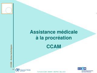 Assistance m dicale   la procr ation CCAM
