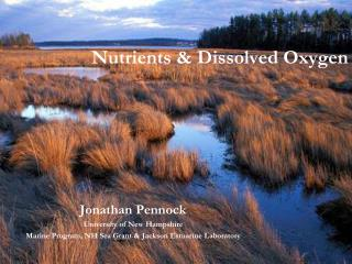 Nutrients & Dissolved Oxygen