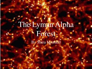 The Lyman Alpha Forest
