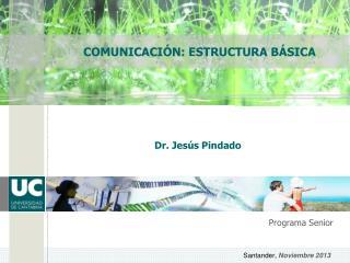 COMUNICACIÓN: ESTRUCTURA BÁSICA