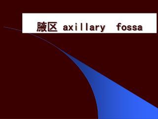 腋区  axillary  fossa