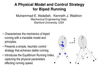 A Physical Model and Control Strategy for Biped Running
