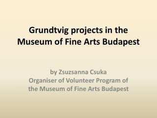 Grundtvig projects in the Museum of Fine Arts Budapest