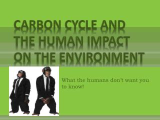CARBON CYCLE AND THE Human Impact on the Environment