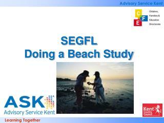 SEGFL Doing a Beach Study