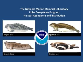The National Marine Mammal Laboratory Polar Ecosystems Program Ice Seal Abundance and distribution