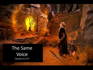 The Same Voice Genesis  3:1-17