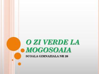 O ZI VERDE LA MOGOSOAIA