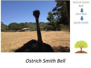 Ostrich Smith Bell