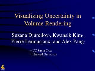 Visualizing Uncertainty in Volume Rendering