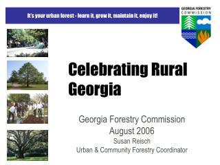 Celebrating Rural Georgia