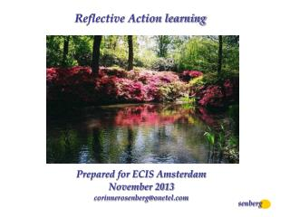 Reflective Action learning