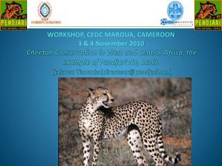 Cheetah Conservation in West and Central Africa; the example of Pendjari NP, Benin  Djafarou Tiomokodirecteurpendjari