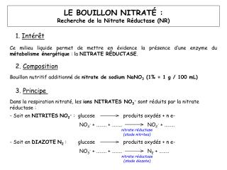 LE BOUILLON NITRAT  : Recherche de la Nitrate R ductase NR