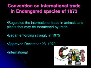 Convention on international trade in Endangered species of 1973