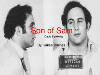 Son of Sam  David Berkowitz