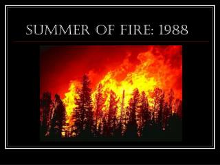 Summer of FIRE: 1988