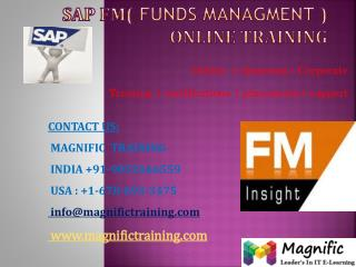 SAP FM ONLINE TRAINING USA
