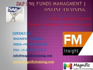 SAP FM ONLINE TRAINING USA