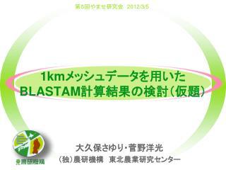 1km メッシュデータを用いた BLASTAM 計算結果の検討(仮題)