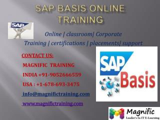 SAP BASIS ONLINE TRAINING IN SOUTH AFRICA