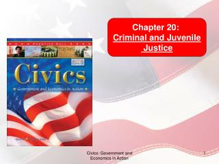 Chapter 20:  Criminal and Juvenile  Justice