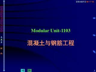 Modular Unit-1103 混凝土与钢筋工程