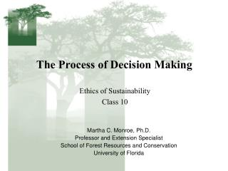 The Process of Decision Making