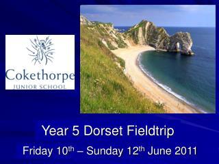 Year 5 Dorset Fieldtrip