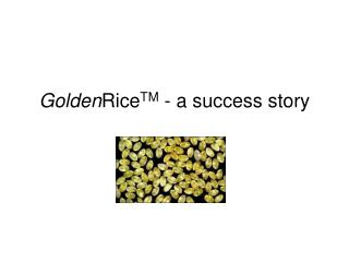 Golden Rice TM  - a success story