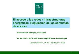 El acceso a las redes / infraestructuras energéticas. Regulación de los conflictos de acceso