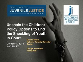 David Shapiro National Juvenile Defender  Center George  Yeannakis TeamChild