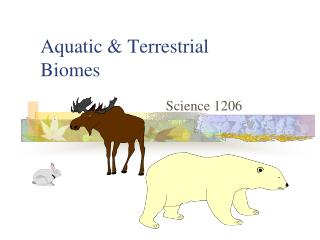 Aquatic & Terrestrial Biomes