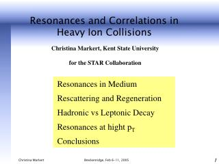 Resonances and Correlations in Heavy Ion C ollisions