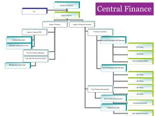 1172 Response Central Finance Structure Mar 2013