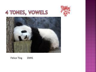 4 tones, vowels