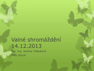 Valné shromáždění 14.12.2013