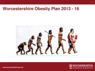 Worcestershire Obesity Plan 2013 - 16