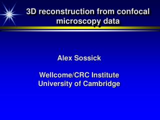 3D reconstruction from confocal microscopy data