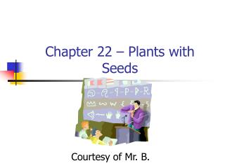 Chapter 22   Plants with Seeds