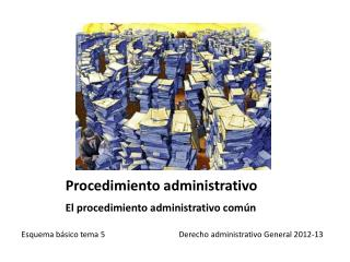 Procedimiento administrativo El procedimiento administrativo común