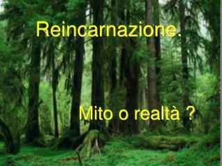 Reincarnazione.