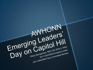 AWHONN Emerging Leaders  Day on Capitol Hill