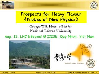 Prospects  for Heavy  Flavour 《 Probes of  N ew Physics 》