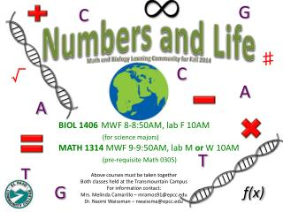 Numbers and Life