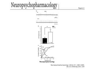 Neuropsychopharmacology  (2012) 37, 1483-1499; doi:10.1038/npp.2011.334