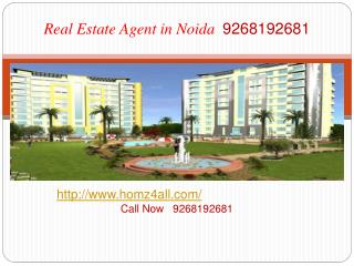 Real Estate Agent in Noida